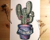 """PRINT A5 . """"Don't touch me"""" Illustration cactus décor nature intérieur plante grasse"""