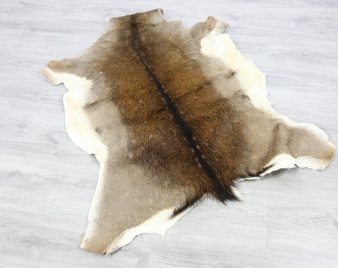 Deer Hide | Deer Rug | Deer Skin | Throw L  Large - Scandinavian Style | Home Decor | #SAR1