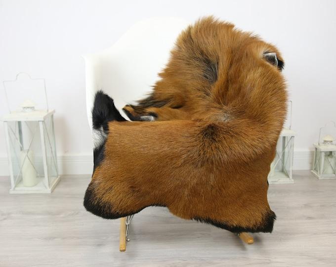 Natural real Goatskin rug, Goat Hide Goat Rug Beige Brown #Goat23