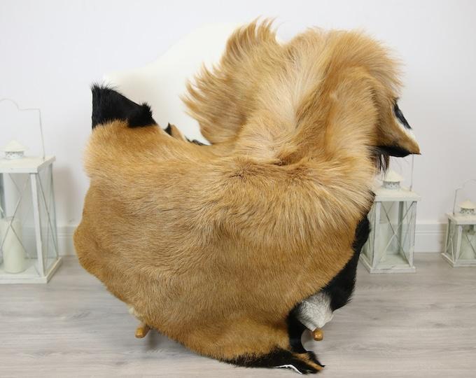 Natural real Goatskin rug, Goat Hide Goat Rug Beige Brown #Goat21