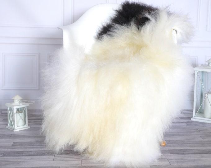 Icelandic Sheepskin   Real Sheepskin Rug    Super Large Sheepskin Rug Beige Black   Fur Rug   Homedecor #KOWISL2