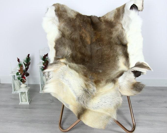 Reindeer Hide | Reindeer Rug | Reindeer Skin | Throw  - Scandinavian Style #GRE15 135x110 | Christmas Decor |