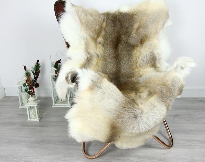 Reindeer Hide | Reindeer Rug | Reindeer Skin | Throw  - Scandinavian Style #GRE16 140x100 | Christmas Decor |