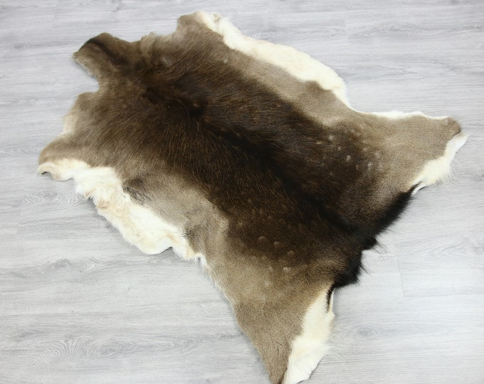 Deer Hide | Deer Rug | Deer Skin | Throw L  Large - Scandinavian Style | Home Decor | #SAR4