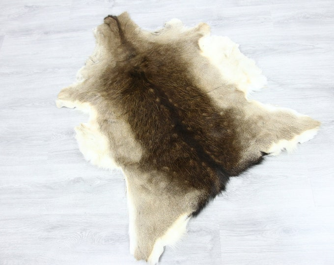 Deer Hide | Deer Rug | Deer Skin | Throw L  Large - Scandinavian Style | Home Decor | #SAR7