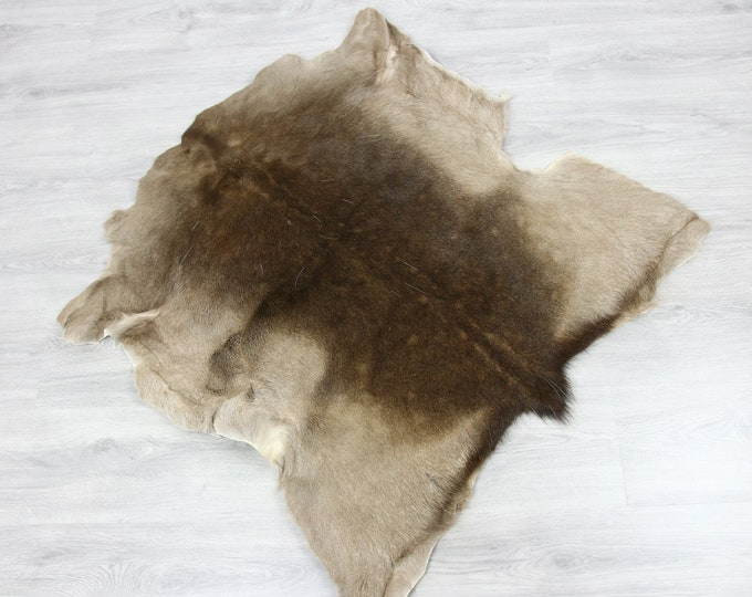 Deer Hide | Deer Rug | Deer Skin | Throw L  Large - Scandinavian Style | Home Decor | #SAR5