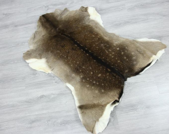 Deer Hide   Deer Rug   Deer Skin   Throw L  Large - Scandinavian Style   Home Decor   #SAR8