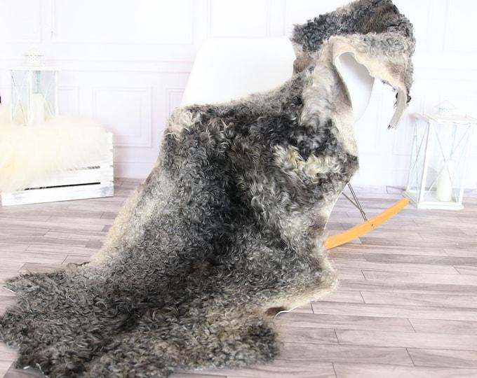 Double Gray Gotland Sheepskin Rug | Long rug | Shaggy Rug | Chair Cover | Runner Rug | Gray Rug | Curly sheepskin rug