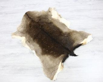 SAL846 XL Scandinavian Reindeer Hide \u2013 Natural Color straightshort pile