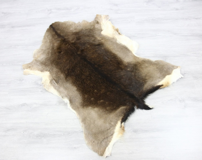 Deer Hide | Deer Rug | Deer Skin | Throw L  Large - Scandinavian Style | Home Decor | #SAR2