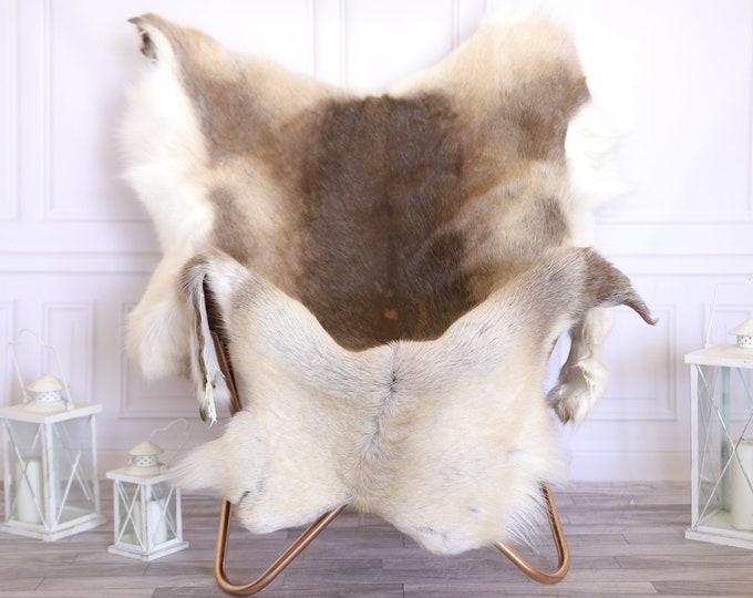 Reindeer Hide | Reindeer Rug | Reindeer Skin | Throw XXXL GIANT  - Scandinavian Style #22RE4 150X115cm