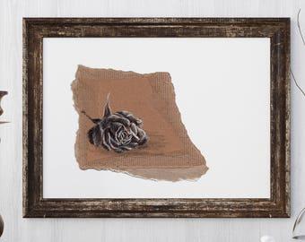 Wilted Rose, original pen & ink drawing on cardboard by Allison Muldoon/A57art/ChuckandStan