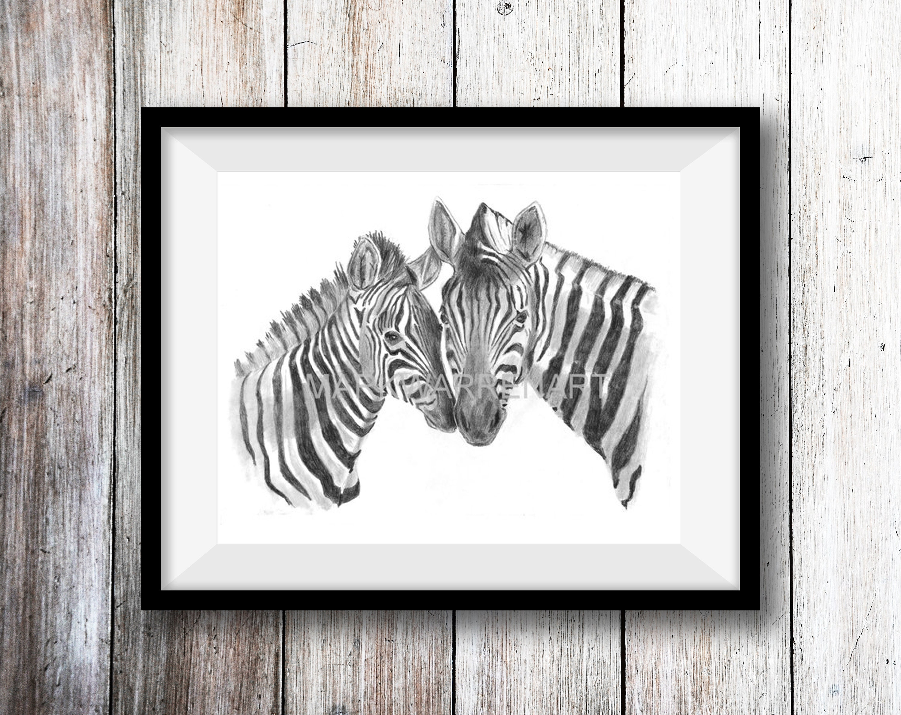 Zebra art print hand drawn animal pencil drawing a4 a5 sizes giclee uk artist nature wildlife wall art nursery picture