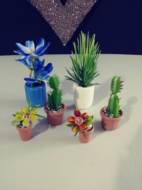 Accessories Botanical Miniature Dollhouse FAIRY GARDEN Succulent