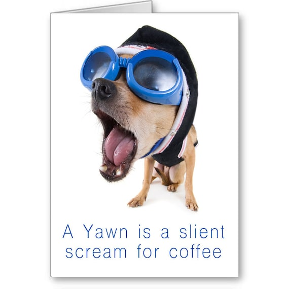 Funny Card,A Yawn is a Silent Scream for Coffee,Funny Dog,Humorous Card, For Friend,Send Positive Thoughts, Positive Thoughts,Funny Birthday