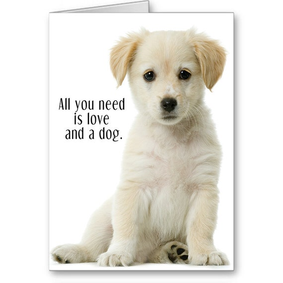 Pet Adoption Card, Foster Puppy, Dog Lover, Cute Dog, Forever Home, Adoption Anniversary, All you need is love....,Send Positive Thoughts