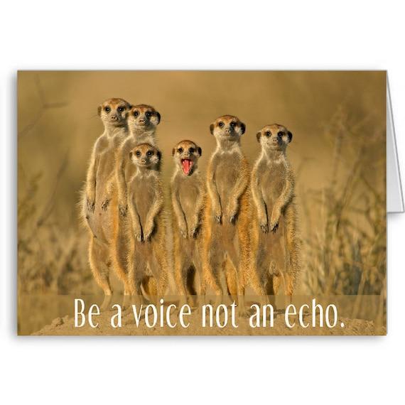 Encouragement Card, Inspirational Card,Cute Animal Card,Meerkats, For Girlfriend,For Boyfriend,Be a voice not an echo,Send Positive Thoughts