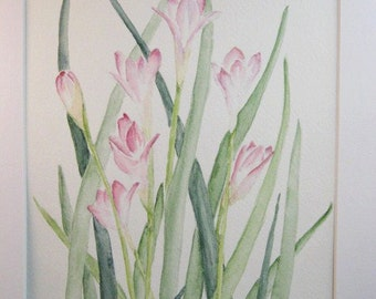 Freesia Fantasy original flower watercolor painting matted and signed