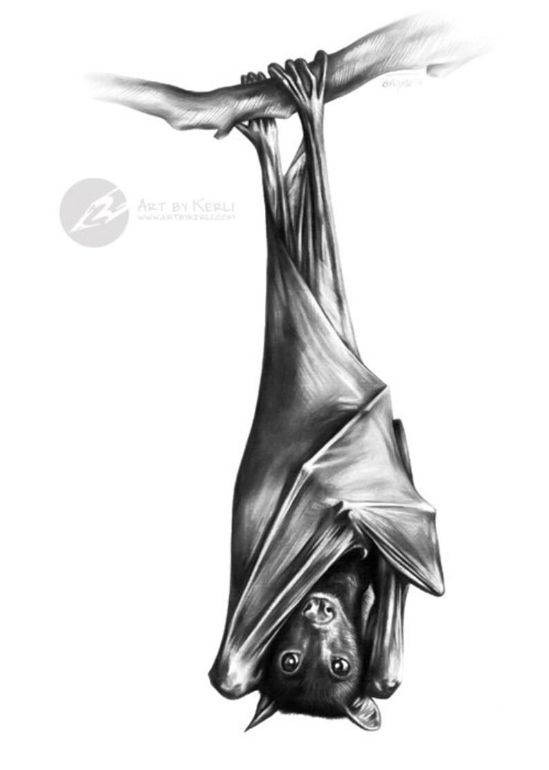 Fruit bat limited edition giclée print art by kerli