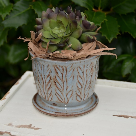Ready to ship...Beautiful handmade wheel thrown succulent cactus orchid pot (#C3)