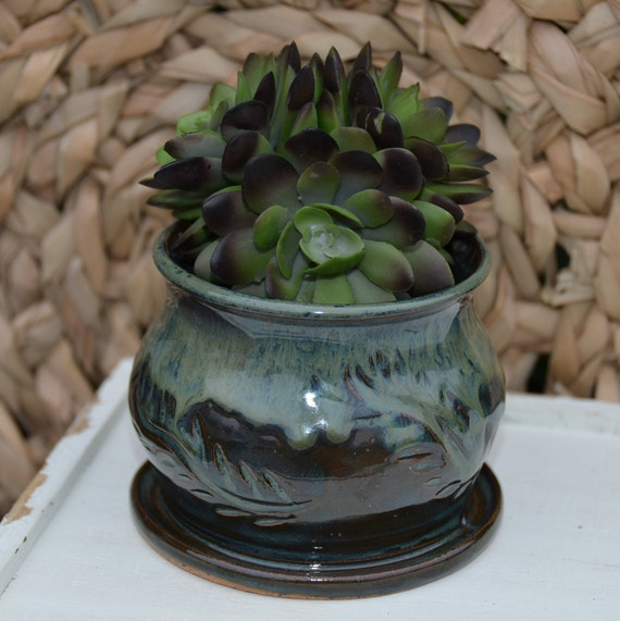 Ready to ship...Beautiful handmade wheel thrown succulent cactus orchid pot (#C2)
