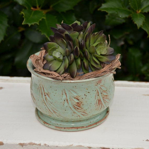 Ready to ship...Beautiful handmade wheel thrown succulent cactus orchid pot (#C5)