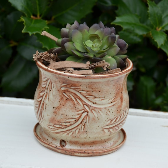 Ready to ship...Beautiful handmade wheel thrown succulent cactus orchid pot (#C14)