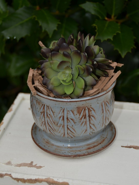 Ready to ship...Beautiful handmade wheel thrown succulent cactus orchid pot (#C8)
