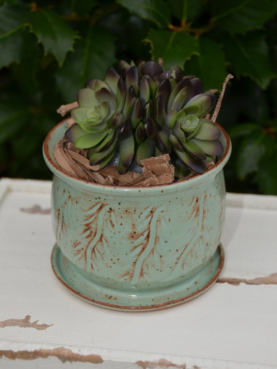 Ready to ship...Beautiful handmade wheel thrown succulent cactus orchid pot (#C4)