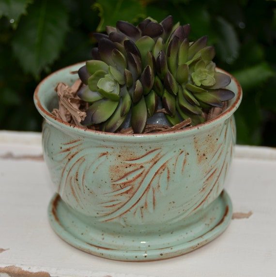 Ready to ship...Beautiful handmade wheel thrown succulent cactus orchid pot (#C12)