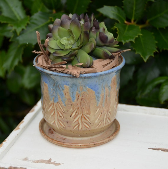 Ready to ship...Beautiful handmade wheel thrown succulent cactus orchid pot (#C6)