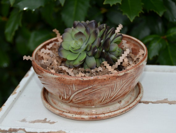 Ready to ship...Beautiful handmade wheel thrown succulent cactus pot (#C7)
