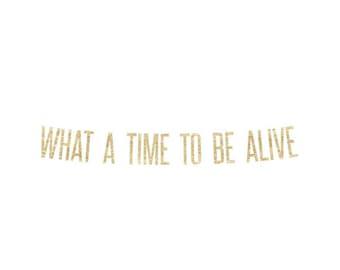 What a time to be alive Banner | drake, drizzy, champagne papi, kanye west, kanye, drake decor, drake gift, Kim K, views, 6