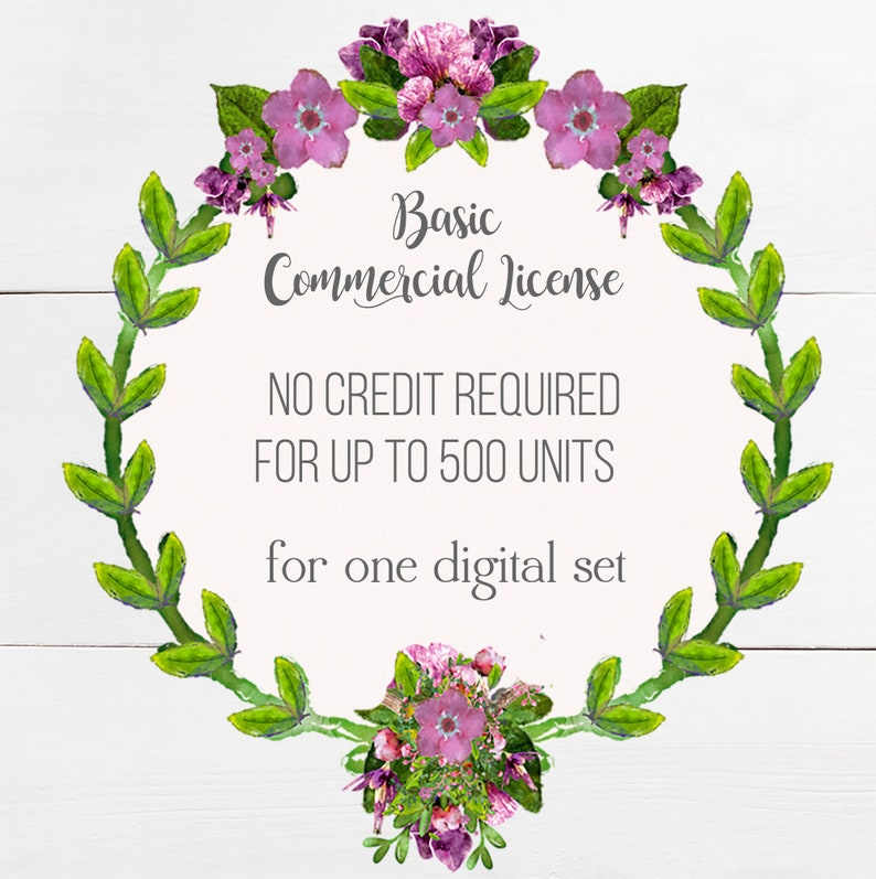 Commercial Use License  Digital Files  Up to 500 Sale Units image 0