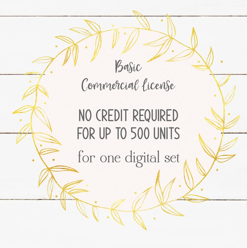 Commercial Use License  Digital Files  Up to 500 Sale Units image 1