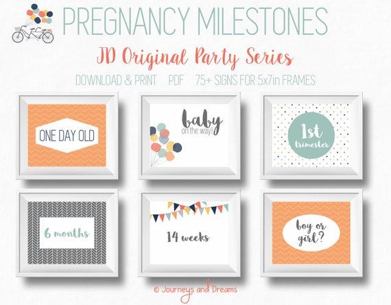 Photo Prop Preemie 100+ Signs DIGITAL DOWNLOAD Printable FosterAdoptive Baby Milestone Signs Original Party Series NICU 3.5x5