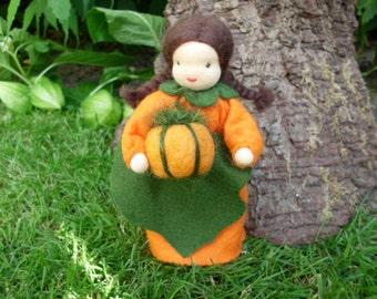 Pumpkin - flower child