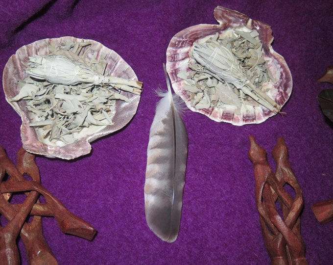 Lion Paw Large Atlantic Scallop Shell with Wooden Tripod Stand, Smudging Gift Set, Smudge Stick W/Golden Eagle Feather