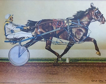 Vintage 1979 Whamo 2 Year Old Pacer Number Print By Gene Gray