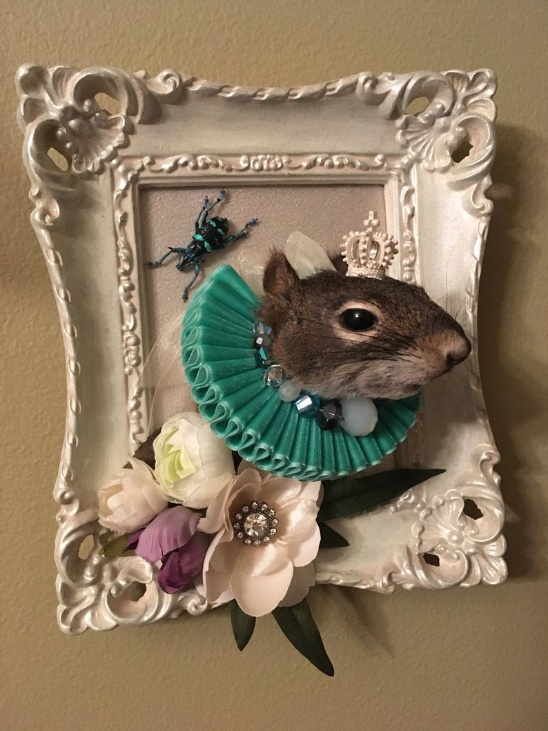 Victorian / Monarchy Inspired Taxidermy Squirrel Mount image 0