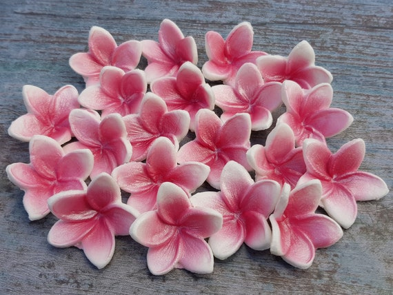 20 edible sugar fondant Hawaii flowers frangipani cake cupcake topper decorations