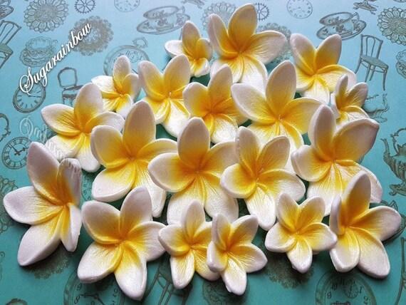 18 edible sugar frangipani plumeria cake cupcake toppers decorations 3 sizes Airbrushed