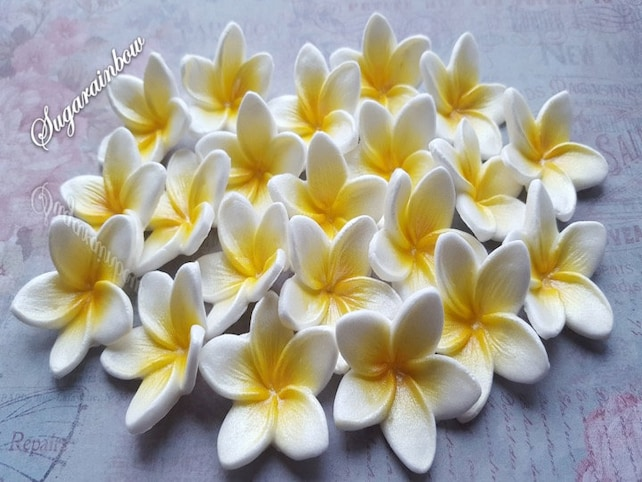 20 Edible Sugar Frangipani Plumeria Flowers Cake Cupcake | Etsy