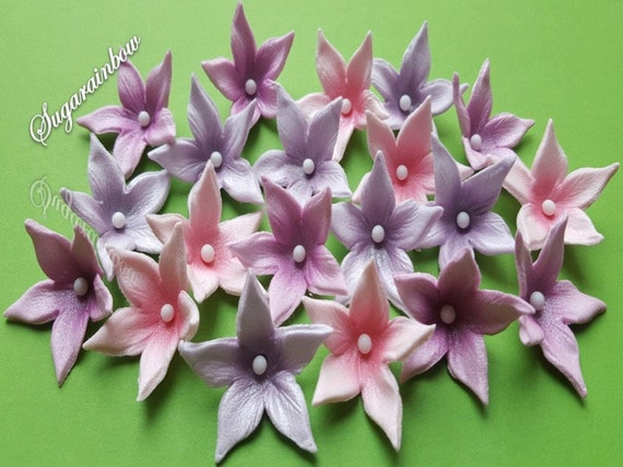 20 Edible sugar flowers blossoms decorations for cake cupcake topper  Pink/Purple/Heather (AIRBRUSHED)