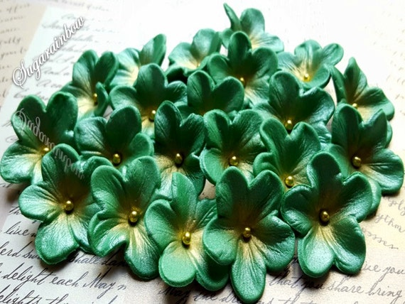 20 Edible sugar paste flowers cake cupcake toppers decorations Christmas green/gold  (AIRBRUSHED)