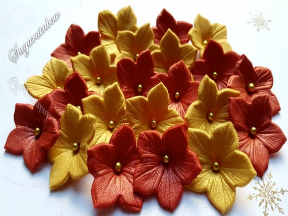 20 Edible Sugar Petunia Christmas flowers decorations cake cupcake toppers  Christmas red/gold AIRBRUSHED