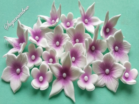20 Edible sugar flowers blossoms AIRBRUSHED for cake cupcake toppers decorations White with Purple middles