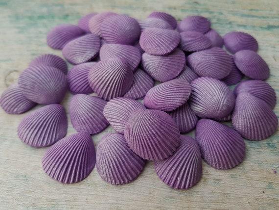 40 Edible sugar paste fondant cake decorations clam shells purple cake cupcake rice toppers