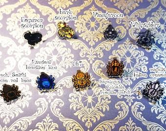 Acrylic arachnid pins-Tarantulas, scorpions, vinegaroon, whipspider