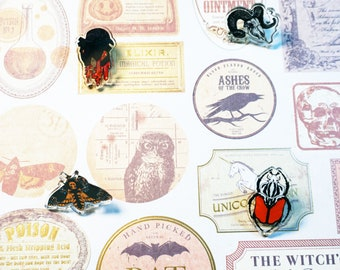 "1"" Acrylic pins- Ram head, smoking ram, deathhead moth, Hercules beetle"